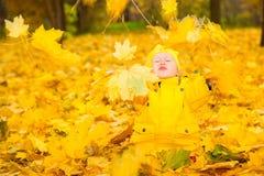 有叶子的愉快的可爱的儿童女孩在秋天公园 秋天 布加勒斯特c e办公室 库存图片