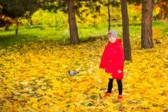 有叶子的愉快的可爱的儿童女孩在秋天公园 秋天 布加勒斯特c e办公室 免版税库存图片