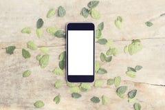 有叶子的空白的智能手机屏幕在木桌上 免版税库存照片