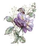 有叶子的罗斯在花束 背景查出的白色 免版税图库摄影