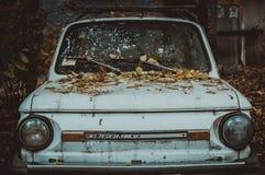 有叶子的老汽车在敞篷 葡萄酒 免版税库存照片