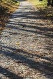 有叶子的老石立方体路在秋天 库存照片