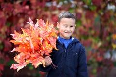 有叶子的年轻男孩在公园 免版税图库摄影