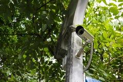 有叶子的CCTV在背景 免版税库存照片
