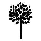 有叶子v叶子的树植物广东ui设计师培训班图片
