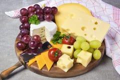 有各种各样的类的可口乳酪盘子乳酪 免版税库存照片