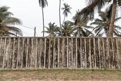 有后边棕榈树的老木篱芭 免版税库存照片