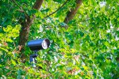 有后面光的暗藏的黑金属街道安全在托架的摄像头和蜘蛛网在绿色灌木 库存图片