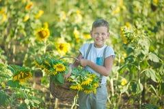 有向日葵篮子的一个微笑的男孩  微笑的男孩用向日葵 向日葵的领域的一个逗人喜爱的微笑的男孩 免版税库存照片