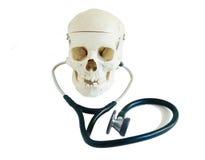 有听诊器的头骨 库存图片