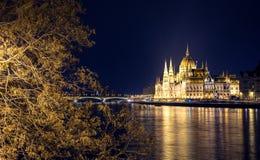 有启发性布达佩斯夜视图有多瑙河、议会和桥梁的 库存图片