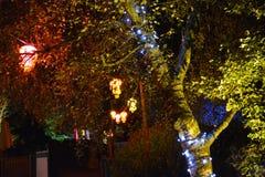 有启发性灯笼和树 免版税库存图片