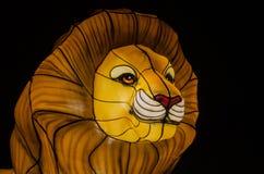 有启发性狮子 免版税库存图片