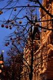 有启发性胶在红色和金黄圣诞节球背景中在树的 库存图片