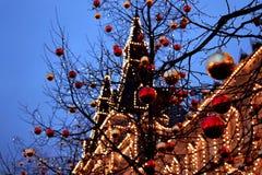 有启发性胶在红色和金黄圣诞节球背景中在树的 免版税库存照片