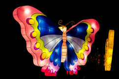 有启发性蝴蝶 库存图片