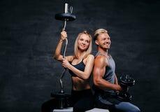 有吸引力的健身夫妇演播室画象坐一个木箱 库存照片