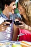 有吸引力的在浪漫野餐的夫妇饮用的酒在countrysid 库存照片