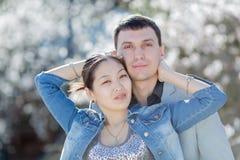 有吸引力的夫妇画象在开花的公园 免版税库存图片