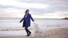 有吸引力的少妇戏剧和抚摸她的萨莫耶特人品种的狗由海负责 在海滩的白色蓬松宠物