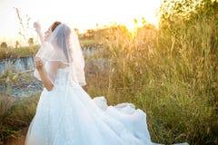 有吸引力的年轻新娘穿戴婚礼礼服和白色面纱,在与外缘光的领域草单独站立从太阳 图库摄影