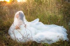 有吸引力的年轻新娘穿戴婚礼礼服和白色面纱,在与外缘光的领域草单独站立从太阳 库存照片