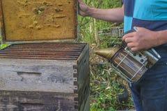 有吸烟者的蜂农 免版税库存照片