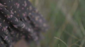 有吹由风的花卉图案的黑暗的礼服 股票录像