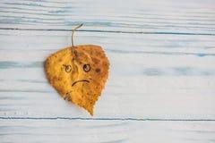 有哀伤的面孔的黄色和绿色叶子在老木背景 免版税库存图片