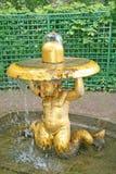 有响铃的喷泉氚核在更低的庭院里在Peterhof 彼得斯堡俄国st 库存图片