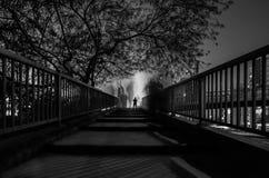 有唯一生还者的桥梁 库存照片