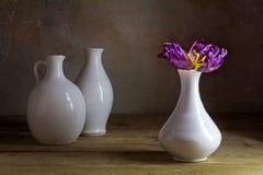 有唯一紫色郁金香的白色陶瓷花瓶与可看见的stam 库存图片