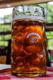 有商标的啤酒杯在桌上在黑客Pschorr啤酒厂 免版税库存照片