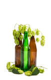 有啤酒花球果树的瓶 免版税库存图片