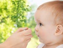 有喂养小婴孩的匙子的母亲手 免版税库存照片