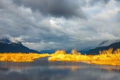 有喜怒无常的天空的被日光照射了沼泽 免版税库存照片