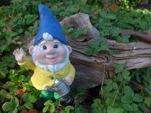 有喷壶的矮人在木根前面 库存图片