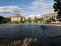 有喷泉和大厦的人造池塘 库存图片
