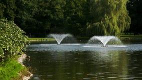 有喷泉的公园 股票视频