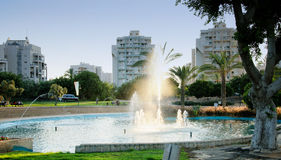 有喷泉的小池塘在日落的城市公园 免版税库存图片