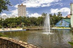 有喷泉的湖在公园圣杜蒙特,佐尾Jose Dos坎波斯,巴西 库存照片