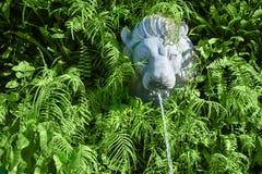 有喷泉的石狮子头在绿色植物中 图库摄影