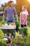 有回来从庭院的女儿的男性农夫 免版税库存照片