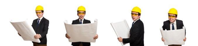 有图画的滑稽的建筑师在白色 免版税库存图片