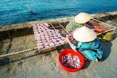 有圆锥形帽子的越南妇女做鱼 库存图片