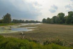 有土和森林剪影的干河 免版税库存图片