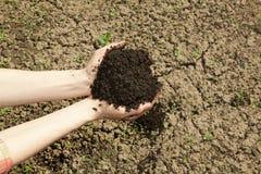 有土壤的手 免版税库存照片