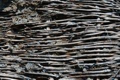有土壤的柳条篱芭 图库摄影