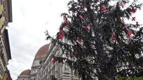 有圣诞树和鸠飞行的佛罗伦萨大教堂 股票录像