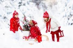 有圣诞树的孩子 雪孩子的冬天乐趣 库存照片
